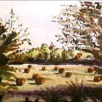 Fall Landscape with Hay Bales