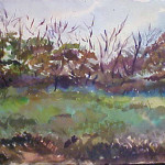 Landscape (untitled)